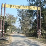 Dudhwa National Park - Entry Gate to Dudhwa