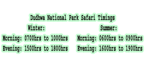 dudhwa national park safari timings- safari booking