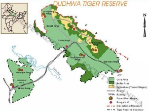 dudhwa national park uttar pradesh India