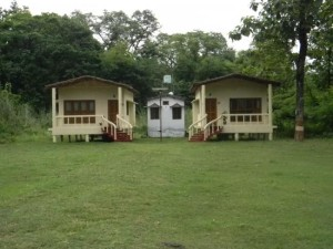 Feel the Pleasure Staying At Wildlife Resorts of Dudhwa National Park