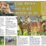 Dudhwa - Home For Animals